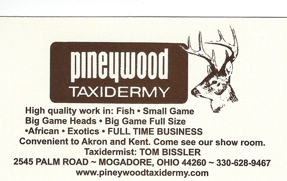 Tom Bissler Pineywood Taxidermy